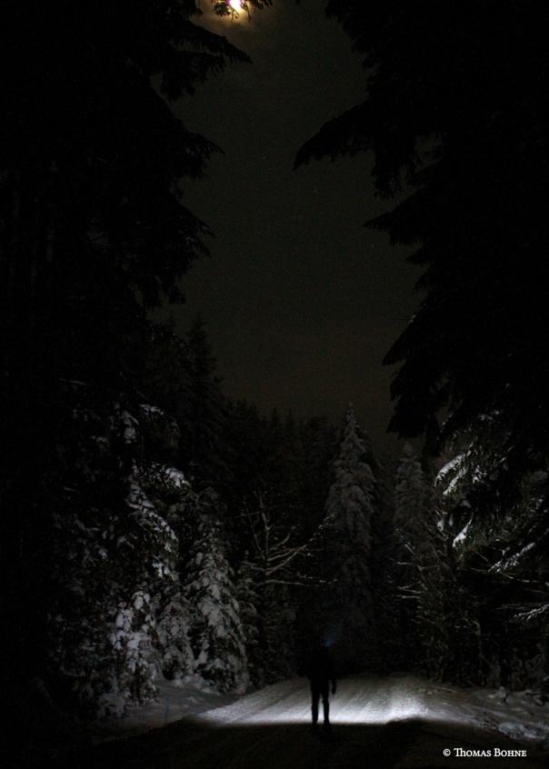 Winterlaufen  bei Nacht