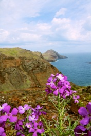 Madeira 35