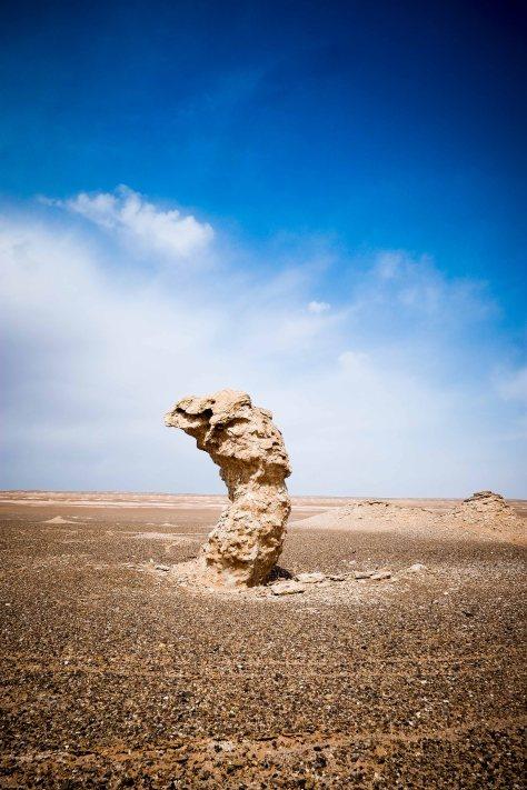 Bizarre Skulpturen inmitten der Wüste